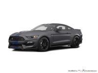 2018 Ford Mustang Shelby GT350 | Photo 3 | Magnetic Metallic