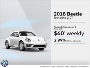 Get the 2018 Beetle!