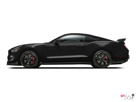 Ford Mustang GT350R 2017 - photo 1