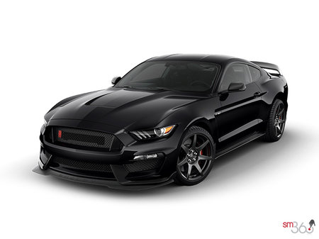 Ford Mustang Shelby GT350R 2019 - photo 2