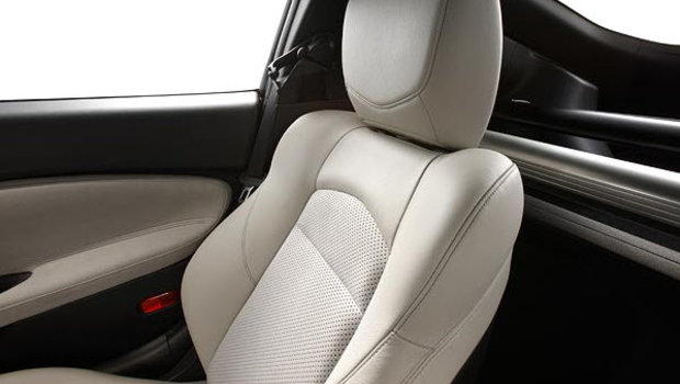 Frost Leather