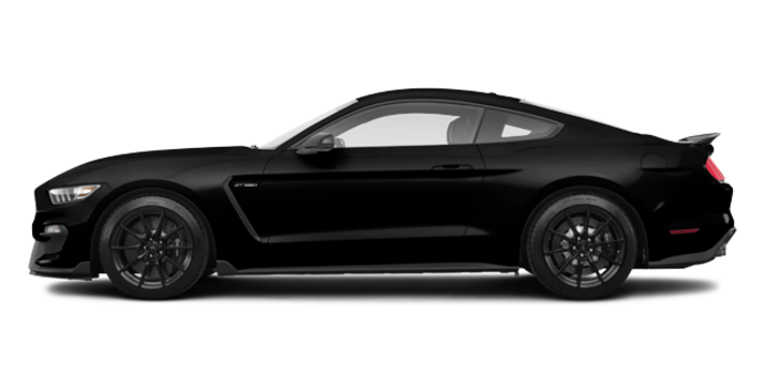 2018 Ford Mustang Shelby GT350 | Photo 4 | Shadow Black