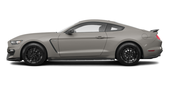 2018 Ford Mustang Shelby GT350 | Photo 4 | Lead Foot Grey