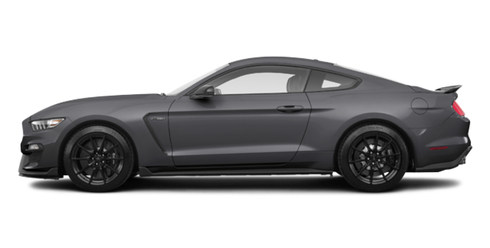 2018 Ford Mustang Shelby GT350 | Photo 4 | Magnetic Metallic