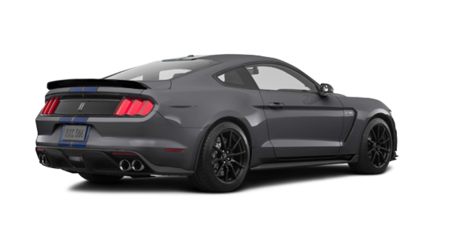 2018 Ford Mustang Shelby GT350 | Photo 5 | Magnetic Metallic