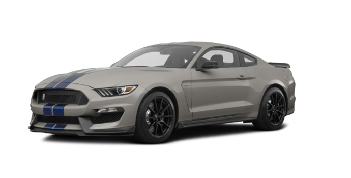 2018 Ford Mustang Shelby GT350 | Photo 6 | Lead Foot Grey
